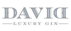 david-logo